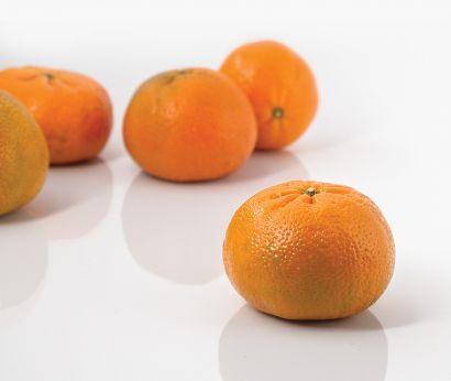 Clementinen Ortanique