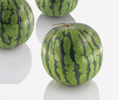 Baby-vattenmeloner