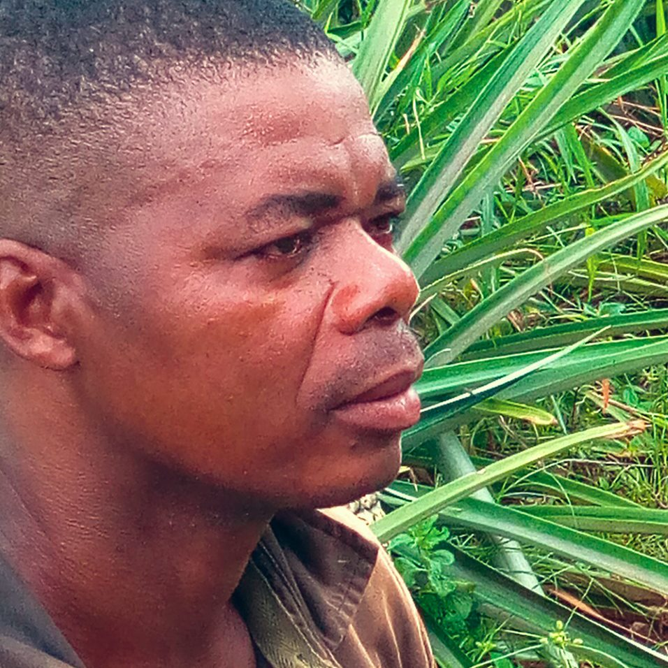 gebana-Togo_Ananas_en